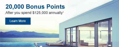 20,000 Bonus Points after you spend $125,000 annually. Learn More.